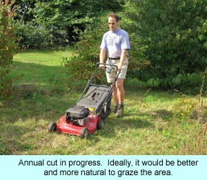 Annual cut in progress